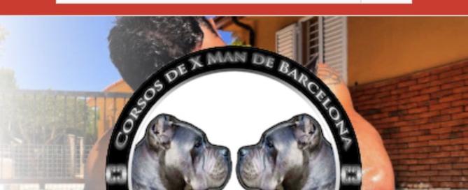 vender cahorros cane corso por internet juanma morato
