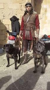 historia cane corso juanma morato 1