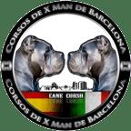 Canecorso breed Barcelona