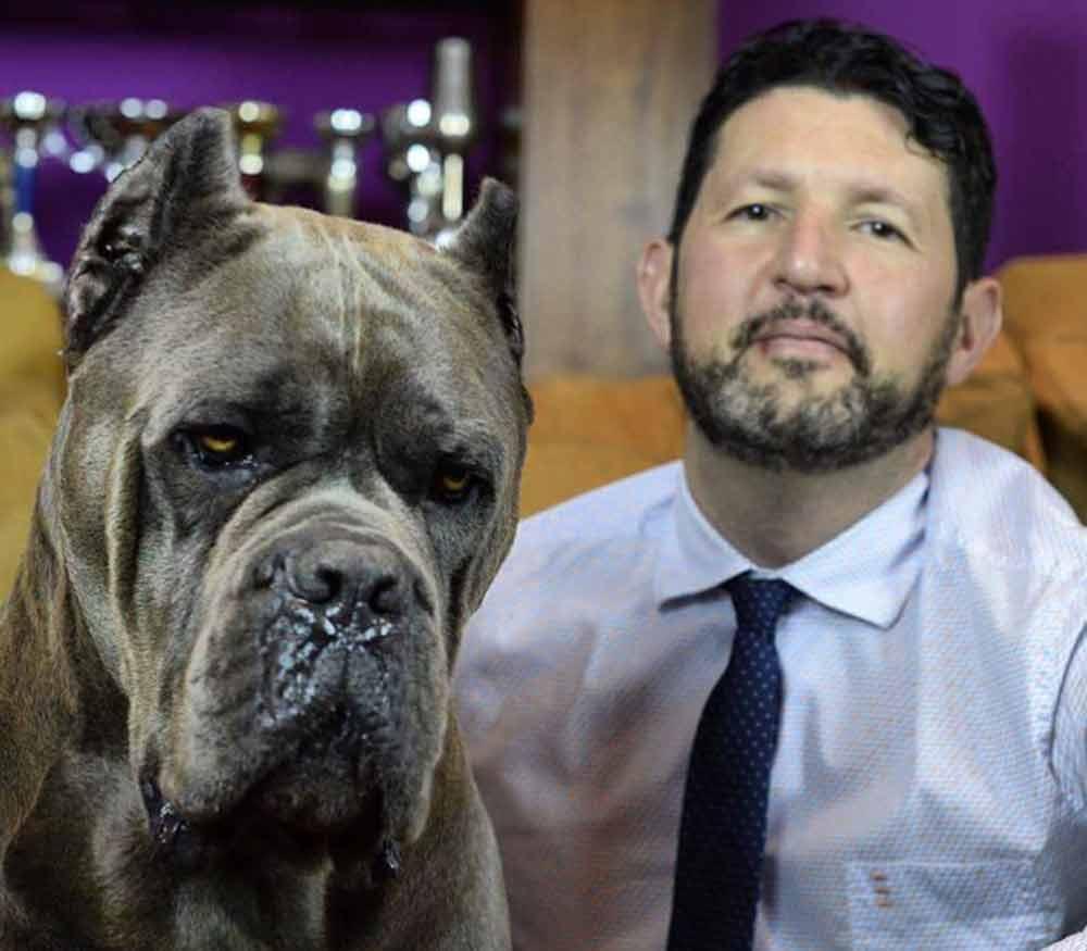 comprar perro cane corso en Caracas y venta de cachorros de cane corso en Caracas Venezuela y criador de cane corso