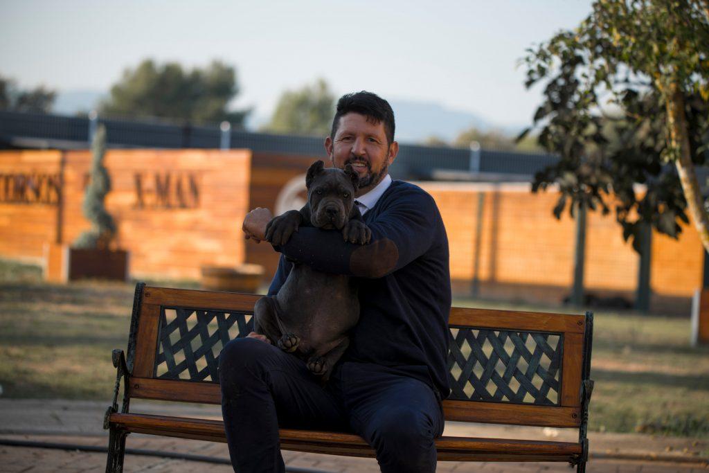 comprar perro cane corso en Guadalupe Mexico y venta de cachorros de cane corso en Guadalupe Mexico3