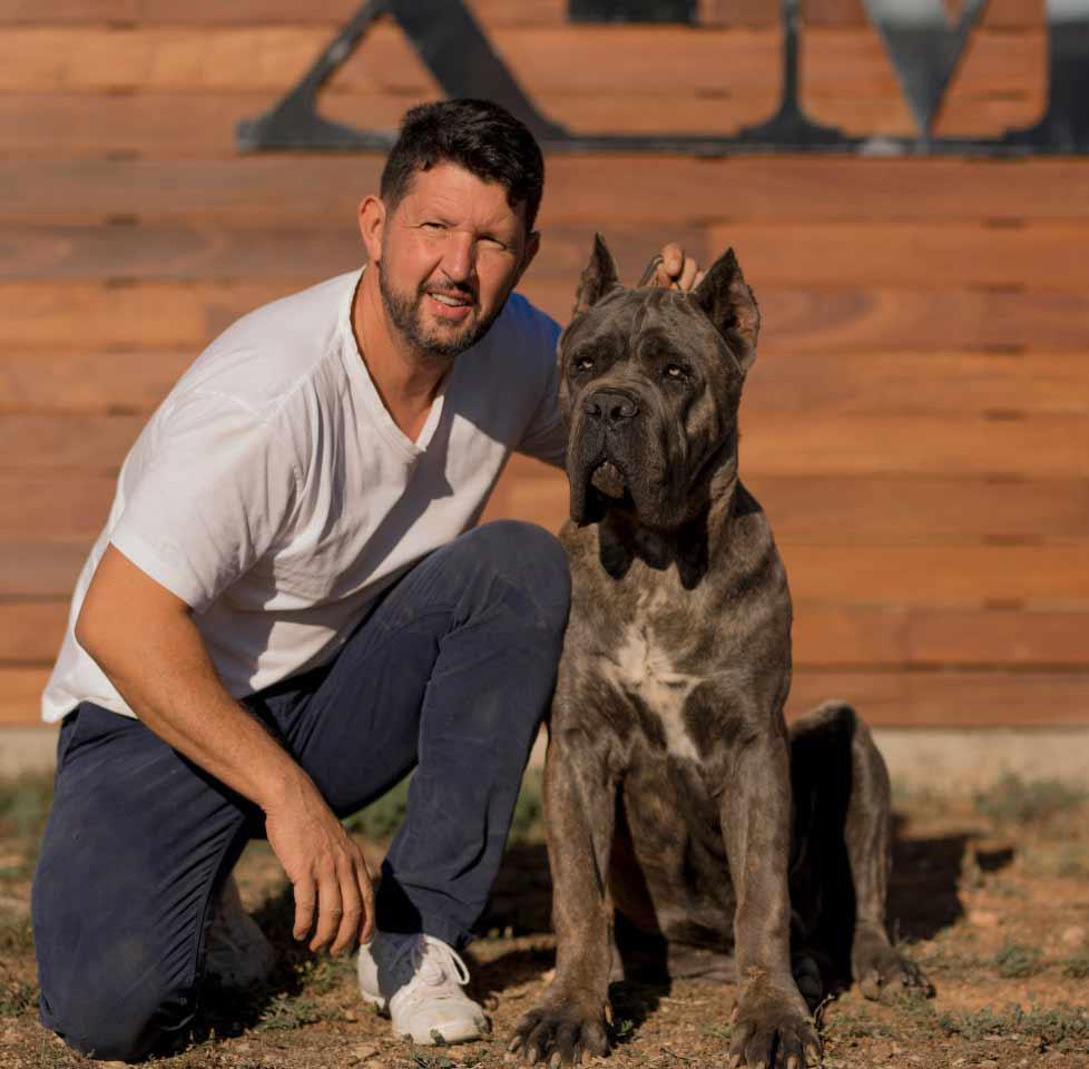 Rietcorso kopen in colonia Duitsland en rietcorso puppies te koop in colonia duitsland1