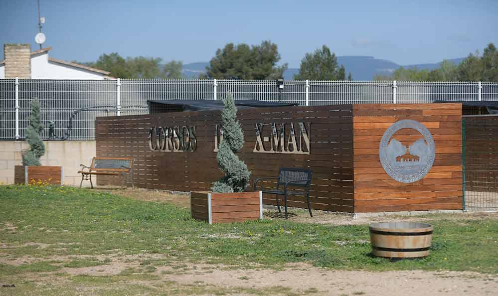 Donde comprar cachorros de cane corso en Teruel y criadores de cane corso en Aragon