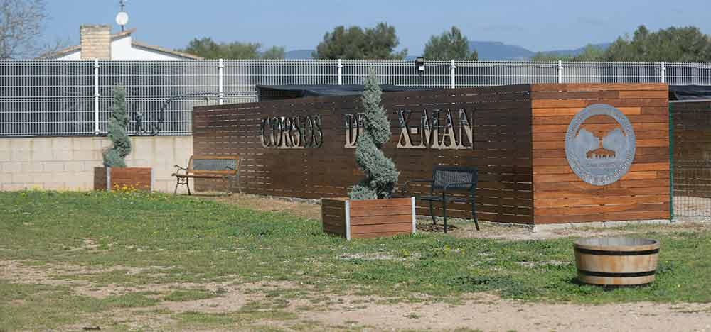 comprar cachorros de perro cane corso en Fuerteventura y criadores de cane corso en Las Canarias1